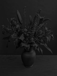 Lilies, Corolla by Daniel Seung Lee
