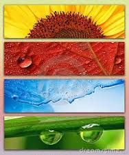 Image result for four seasons paints