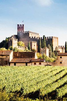 The Castle of Soave or Castello di Soave. Travel to Northern Italy https://gourmandly.com/northern-italy/