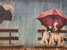"""Street Art. """" It's so boring when it rains because we can't play outside! """" - 송민호 (Song Min-ho) - Google+"""