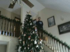 Our 14ft tree