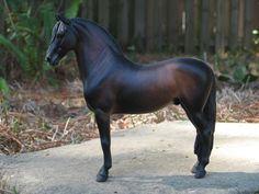 Faran CM - Rogue Horse Studio