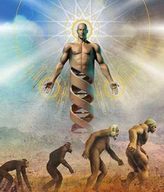 The The Darwin Theory of Evolution. Many of our concepts about ourselves and the universe changed after the emergence of the theory of evolution, which Theory Of Evolution, Human Evolution, Meditation Music, Guided Meditation, Usui Reiki, Charles Darwin, Darwin Theory, Spiritual Transformation, Psy Art