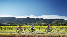 Six of the best: New Zealand bike rides