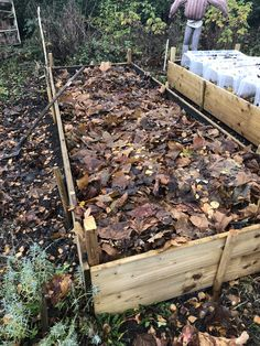 Organic vegetable garden: dead leaves and hedgehog? Use the dead leaves and leave a large pile for hedgehogs! Growing Fruit Trees, Potager Bio, Organic Vegetables, Plantation, Clematis, Vintage Home Decor, Compost, Vegetable Garden, Shrubs