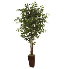 Nearly Natural 5931 6-Feet Ficus Tree with Bamboo Planter, Green ** Read more  at the image link.