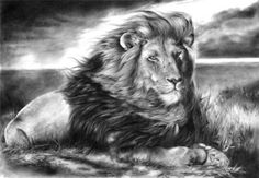 """""""Big cats"""". Photo-realistic drawing by British artist Peter Williams"""