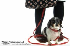 My dog Lilly and Me captured by Dennis Wibben at Wibben Photography.