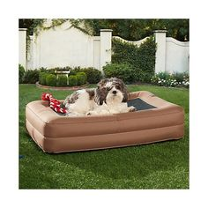 Enchanted Home Pet Outdoor Inflatable Dog Bed, Brown, Small (Up to 25 lbs.) >>> To view further for this item, visit the image link.