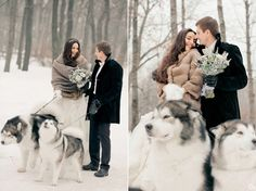 winter wedding, husky, bride and groom, snow
