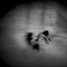 Spirits - album cover