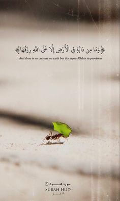 Allah is the best creator Muslim Quotes, Religious Quotes, Islamic Love Quotes, Arabic Quotes, Beautiful Quran Quotes, Quran Quotes Inspirational, Coran Quotes, Hijrah Islam, Quran Karim