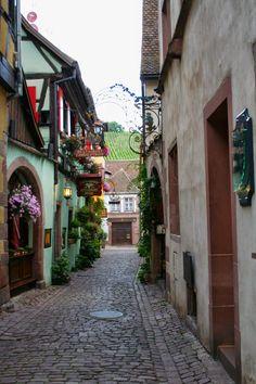 Rutas Mar & Mon: Viaje Alsacia, Selva Negra, Dolomitas, Venecia y Chamonix (Parte I)
