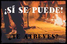 https://www.laingarciacalvo.com/eventos