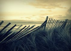 picket fence sea