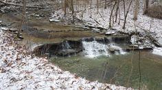 Oridivician Limestone, Cincinnati Nature Center, Ohio