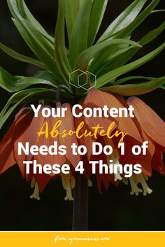 Of all marketing, nothing beats creating, sharing, and promoting your own content. But that content needs to accomplish one of four goals for your business.