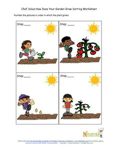 Vegetables and fruits plants chronological worksheet.