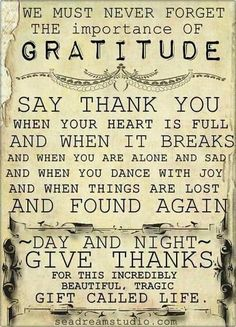 ❥ gratitude~ every day in all things