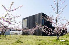 Japanese Peach Garden Home Blends Tradition With Modern Development Peach Garden Home in Niigata, Japan by Takeru Shoji Architects – Inhabitat - Sustainable Design Innovation, Eco Architecture, Green Building