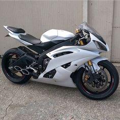 White R6