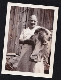 Vintage Antique Photograph Woman Wearing Glasses With Arm Around Cow's Head