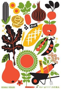 fruit and vegetables in automne // Lotta Kühlhorn: Herbs Illustration, Vegetable Illustration, Graphic Illustration, Illustration Artists, Illustrations Vintage, Vector Illustrations, Pinterest Instagram, Ideas Geniales, Design Poster