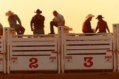 I cant wait till summer because that means rodeos (: Country Strong, Country Boys, Cowboy And Cowgirl, Cowboy Pics, Rodeo Events, Everything Country, Rodeo Cowboys, Rodeo Life, Bull Riders