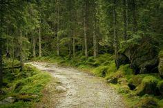 magiczne miejsce na spacer
