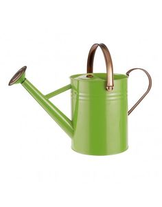 Metal Watering Can - Fresh Green