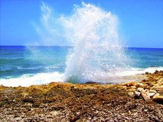 The blow holes ~ Cayman Islands