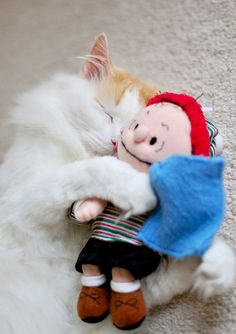 We all need a hug sometime in our lives.