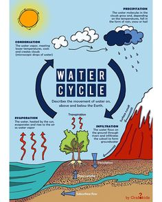 The Water Cycle! ☀️🌧💧 [EARTH SCIENCE] Infographic for kids 👉 follow us to see what's coming next! @grafokids . . . #water #watercycle #kids… Water Cycle Poster, Water Molecule, Diy Frame, Earth Science, Cool Diy, School Projects, High Quality Images, Vibrant Colors, Clouds