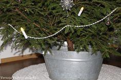 joulukuusi, christmas tree,  クリスマスツリー