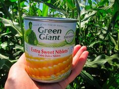 Non GMO Foods at Green Giant! They do not use any GMO seeds or crops in the growing of any if their products!