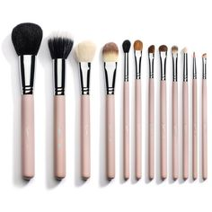 12 Piece Professional Makeup Brushes Pink ($23) ❤ liked on Polyvore featuring beauty products, makeup, makeup tools, makeup brushes, beauty, cosmetics, fillers, brushes, pink makeup brushes and travel makeup brushes