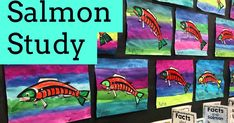 Salmon Study Fun Classroom Activities, Classroom Hacks, Classroom Organization, Classroom Management, Elementary Science, Elementary Teacher, Science Education, First Year Teachers, New Teachers