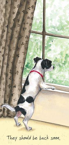 Scruffy Mutts Back soon http://www.thelittledog.co.uk