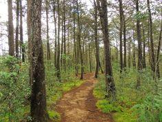 Parque Arví en Santa Helena, Antioquia
