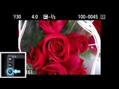 Canon EOS 5D Mark III - Tutorial Playback and Magnifying Image 14/14 - YouTube