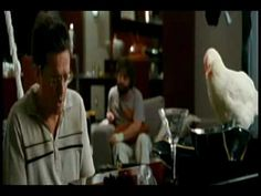 "The Hangover - Stu's song ""Doug"" - YouTube ---haha!! one of my favorite scenes from this movie!"