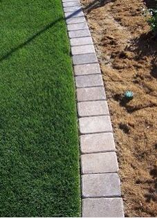 Flush with grass garden edging