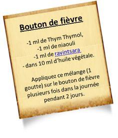 thym-thymol-bouton-de-fievre