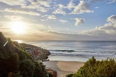#perfecthideaways #escapetheordinary #thedjinnpalace #plettenbergbay #beach #dogfriendly #family #justfortwo #multigenerationalhideaways #photoshoots #SUPing #accomodation #vacationrentals #vacation #holiday #southafrica Rental Property, Dog Friends, South Africa, Palace, Wildlife, Photoshoot, Vacation, Beach, Water