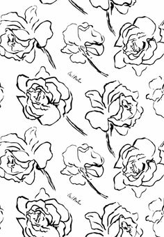 Beaton Bloom Floral, Linen, Paper, Silk, Fabric by Suzan Fellman Llc Black And White Wallpaper, Black And White Prints, Black And White Abstract, Black White, Accent Wallpaper, Cecil Beaton, Floral Drawing, Textile Artists, Printing On Fabric