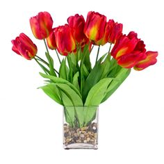 This beautiful tulip bouquet in a square glass vase adds the perfect touch to any home. The silk and polyester flowers offer the elegance of real flowers without the maintenance.