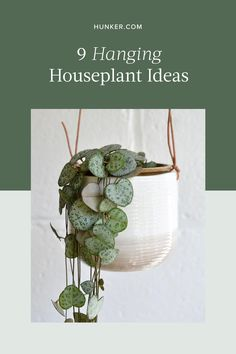 If you want to add some greenery to your home — whether to brighten up a corner or to spruce up a small space — think hanging plants. Generally, plants suspended and cascading from above can beautifully fill an empty area. Here are nine houseplants that are perfect for hanging. #hunkerhome #houseplants #hangingplants #hanginghouseplants #plants Inside Plants, Cool Plants, Air Plants, Garden Plants, House Plants Decor, Plant Decor, Planting Succulents, Planting Flowers, Household Plants