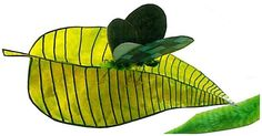 Butterflies and Moths on leaves Nature Crafts, Moth, Butterflies, Plant Leaves, Creatures, Plants, Butterfly, Plant, Planets