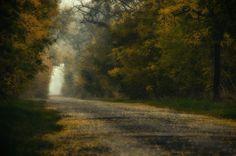 őszi utakon