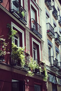 Madrid Colorful | Flickr - Photo Sharing!